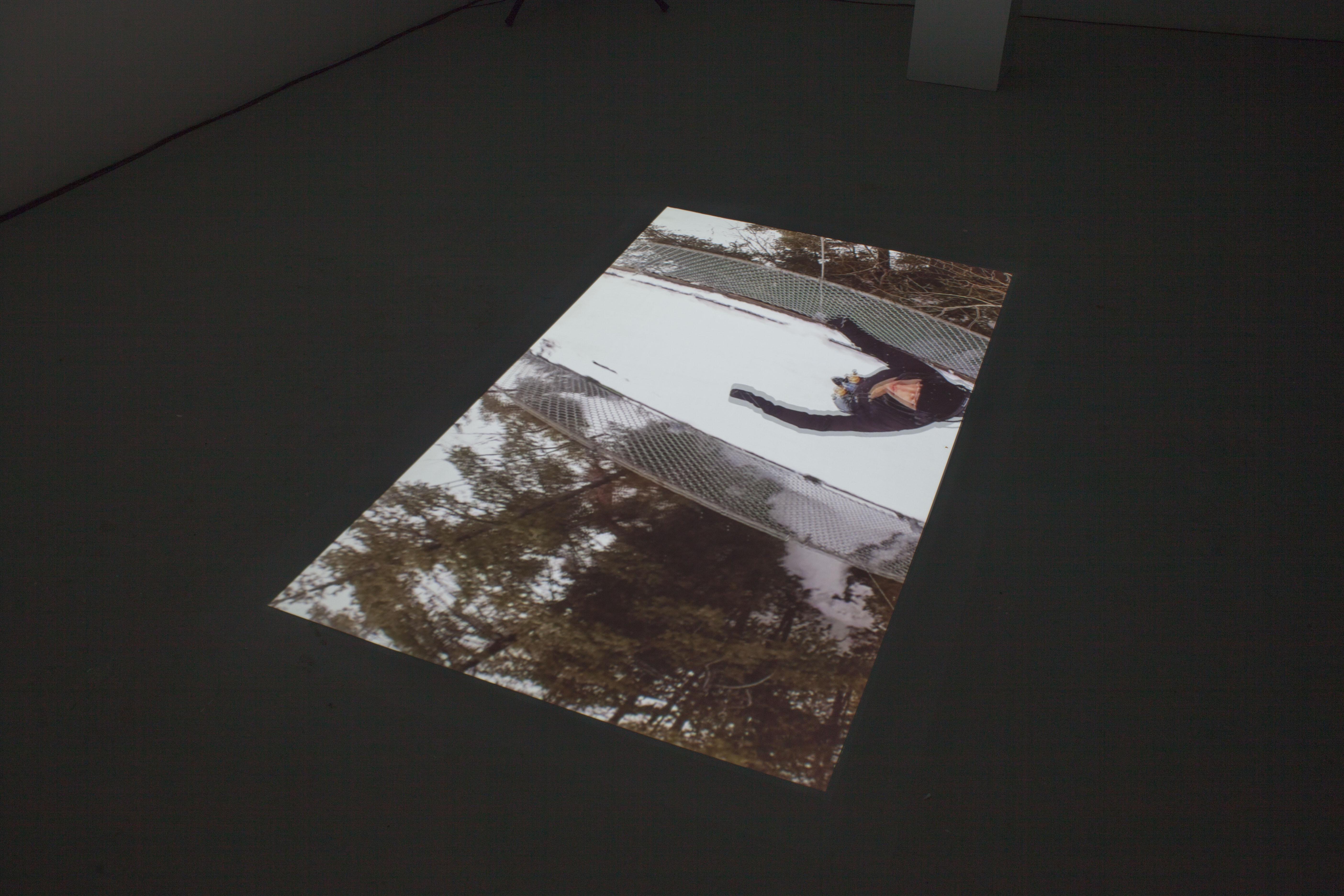 Adelin Schweitzer / Dichotomie